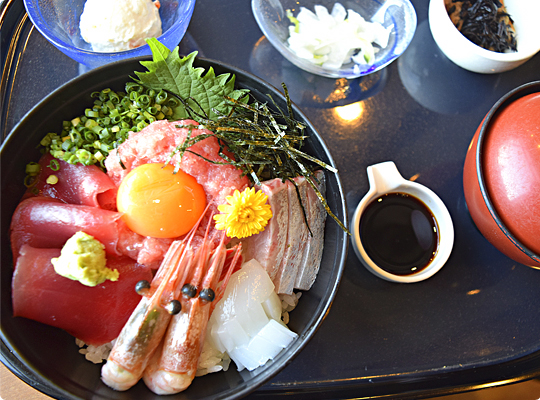 koajiro2_10.jpg